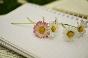 Christina Didszun, In 12 Schritten zu Glück, Erfolg und Lebensfreude