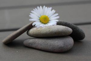 In 12 Schritten zu Glück, Erfolg und Lebensfreude
